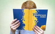 У підручнику з української мови помітили посилання на сайт для дорослих. ФОТО