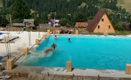 В Карпатах корова вирішила скупатися у басейні з туристами. ВІДЕО