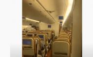 Кажан у салоні змусив розвернути пасажирський літак. ВІДЕО