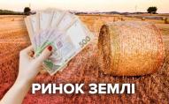 Шмигаль назвав нинішню ціну гектара землі в Україні