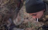 На Волині прикордонники строкової служби познущалися з тварини. ВІДЕО