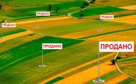 Скільки коштуватиме гектар землі в Україні та на Волині