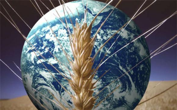 На Землі стрімко зникає хімічний елемент: людству загрожує голод