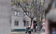 Пояснити не змогла: рятувальники знімали з дерева 28-річну вагітну жінку