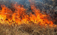 Екоінспектори оштрафували волинянина за спалювання сухої трави
