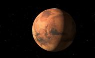 NASA відправить на Марс собаку?