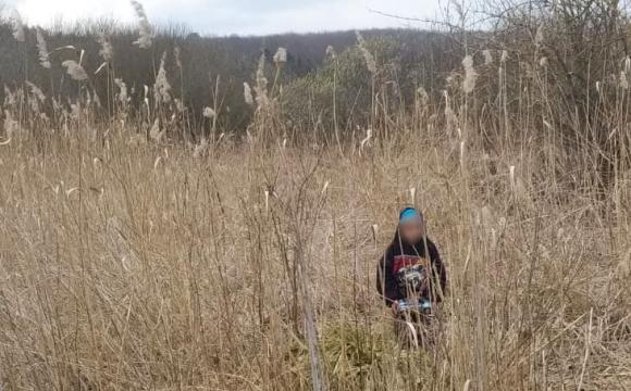 Маленького волинянина знайшли в очереті: слід взяв собака. ФОТО