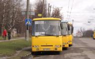 У громадському транспорті Луцька оштрафували 4 «зайців»
