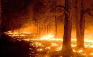 Які штрафи загрожують волинянам за пожежі в екосистемах?