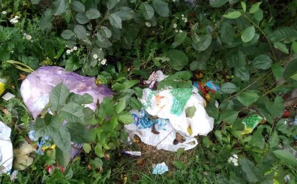 «Вийти за хлібом соромно»: біля магазину у Нововолинську насипом валяється сміття. ФОТО