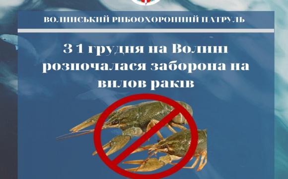 Волинянам не можна ловити раків