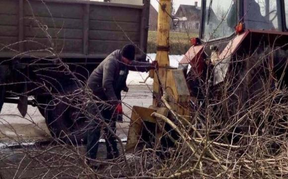 У селі під Луцьком порізали дерева